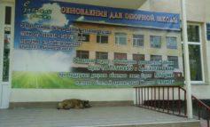 Глава Арцизской райгосадминистрации сказал, что школа – не место для политики и повесил баннер