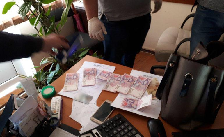 Справка за 500 гривен: в Одесской области разоблачили налоговика-вымогателя