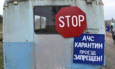 В Василевке Болградского района выявлен вирус африканской чумы свиней