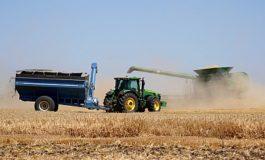Белгород-Днестровский  район лидирует в области по урожайности