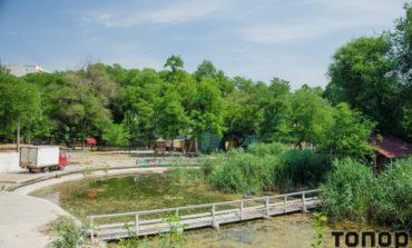 Как отдыхают летом в одесском Дюковском парке