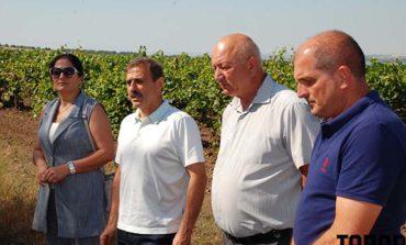 Антон Киссе встретился с виноградарями