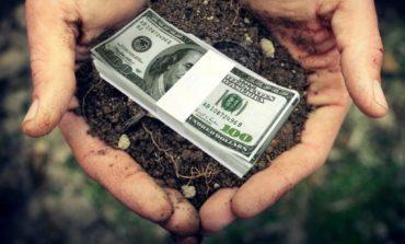 В Ренийском районе 40 процентов сельскохозяйственных земель не приносят в местные бюджеты ни копейки