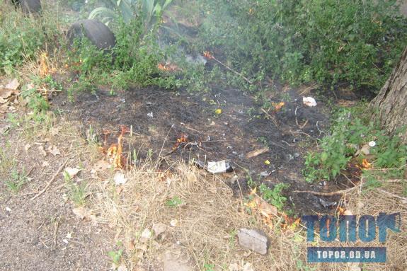 В Арцизе неизвестные убирают сухую траву, поджигая её (фото)