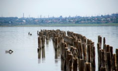 Как выглядит одесское «мертвое» море (фото)