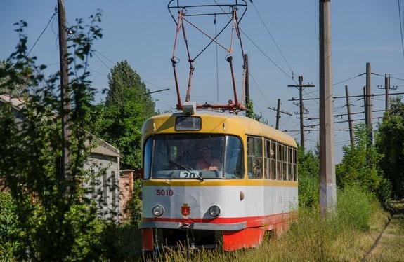 Жертва порывистого ветра: в Одессе упавшее дерево перекрыло движение «камышового трамвая»