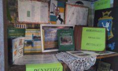 В селе Прямобалка Арцизского района местная жительница создала на дому историко-культурный музей