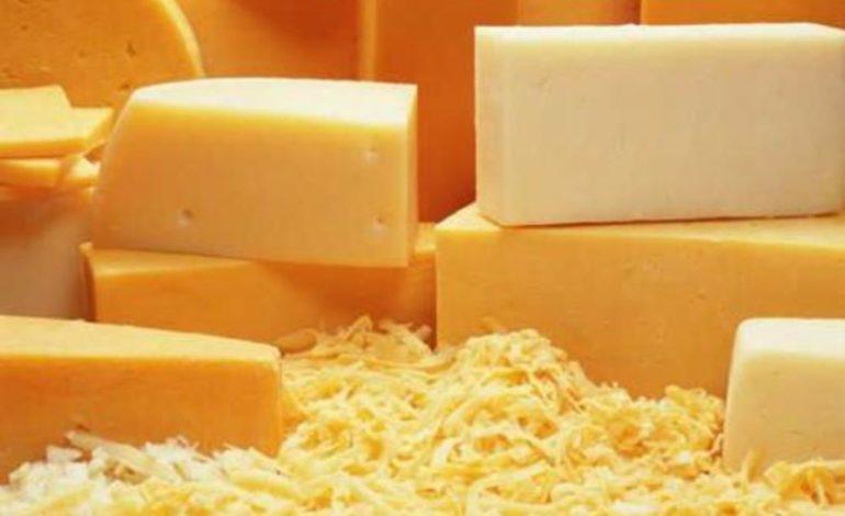 Украина экспортировала 4,3 тысячи тонн сыров