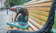Одесская кошка снова с планшетом (фото)