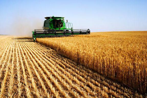 Кабмин разрешил выдавать аграриям госпомощь при засухе и на развитие орошаемого земледелия