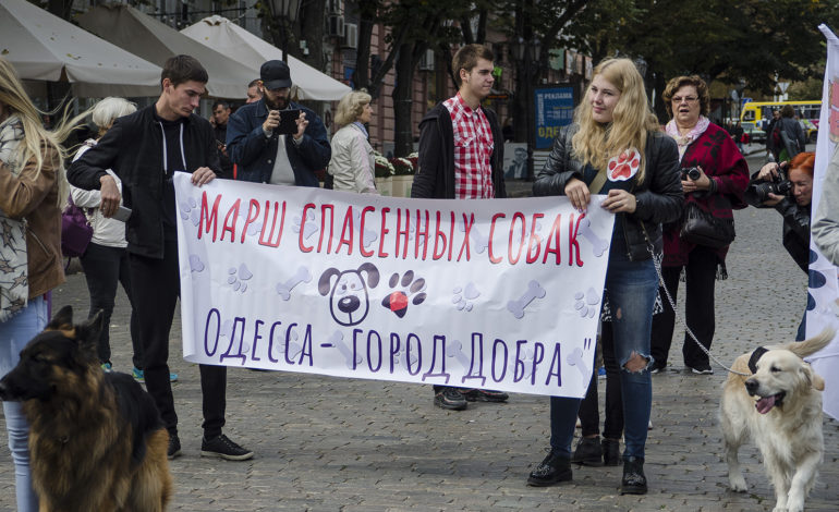 В Одессе прошел второй марш спасенных животных (фоторепортаж)