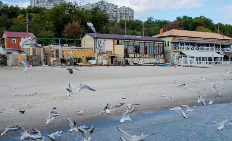 Odessa osen2