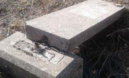 Миссия ОБСЕ изучила факты вандализма на еврейском кладбище в Рени
