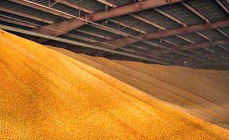 Аграрии Болградского района завершают осенне-полевые работы