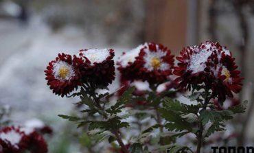 Первый снег в Болграде (ФОТО)