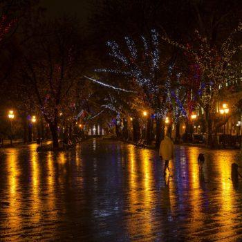 Холодная и светящаяся: улицы Одессы после дневного дождя (фото)