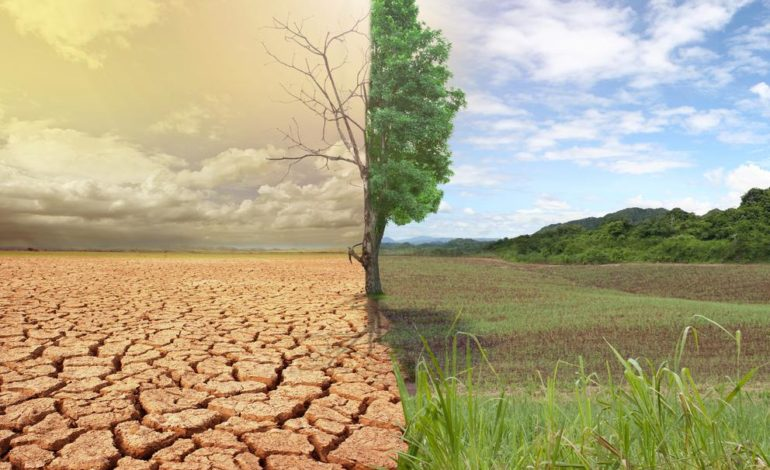 Украина получит от Германии 35 миллионов евро на противодействие и адаптацию к изменению климата