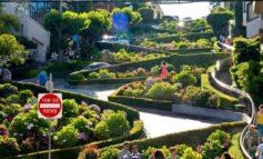 Украинские города станут «зеленей»