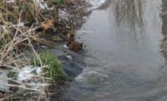 В Белгороде-Днестровском канализационные стоки текут в лиман