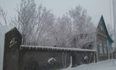 Зимние пейзажи в Островном Арцизского района (фоторепортаж)
