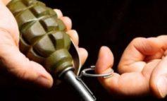 Криминальные «плоды» в Ренийском районе: «урожайность гранат» растёт