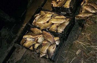 На реке Турунчук, около Троицкого, задержали браконьера