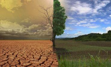 Земля: и без семи нянек, и без глаза