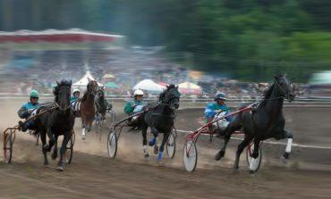 В Саратском районе состоятся конные соревнования