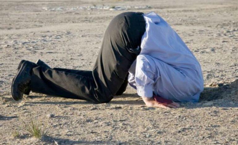 Почему в Ренийском районе не хотят выносить сор из избы? Потому что он невыносим!
