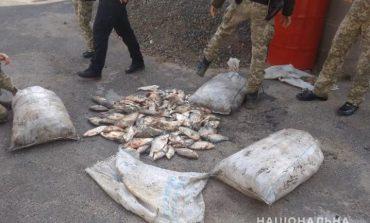 Жители Орловки Ренийского района попались на браконьерстве на озере Кагул (фото)