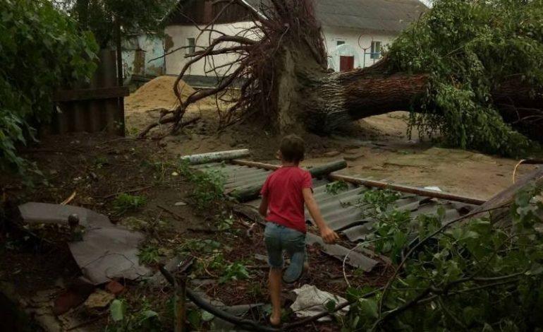 В Тарутинском районе ураганный ветер срывал крыши домов и валил деревья (фотофакт)