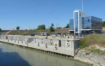 Такие разные соседи по Дунаю: шустрый карлик обгоняет больного гиганта
