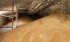 Из Украины вывезли 21 млн тонн зерна