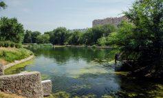 Дача, парк и место для выставок: двухсотлетняя история Дюковского