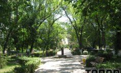 Августовская прогулка по Арцизу (ФОТО)