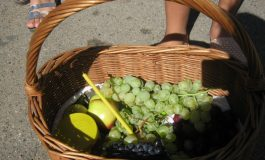 В Арцизе и природа, и жители радуются Яблочному Спасу (ФОТО)