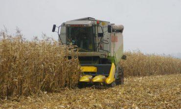 В Болградском районе началась уборка поздних сельхозкультур