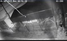 В Тарутино камеры видеонаблюдения зафиксировали, как вандалы выломали двери клеток мини-зоопарка (видео)