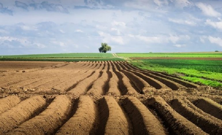 Кабмин дал добро на открытие рынка земли