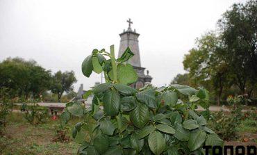 В Болграде не гнушаются обворовывать памятники (фотофакт)