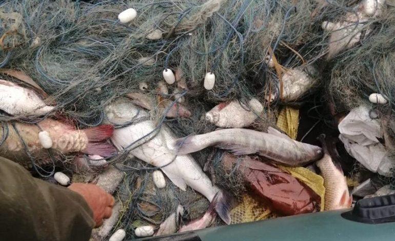 Одесская область: правоохранители на озере Катлабух задержали браконьеров с незаконным уловом (фото)