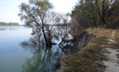 Власть продолжает толочь в ступе воду Придунайских озёр