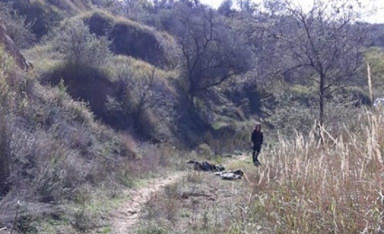 В карьере Белгород-Днестровского района нашли убитого из охотничьего ружья