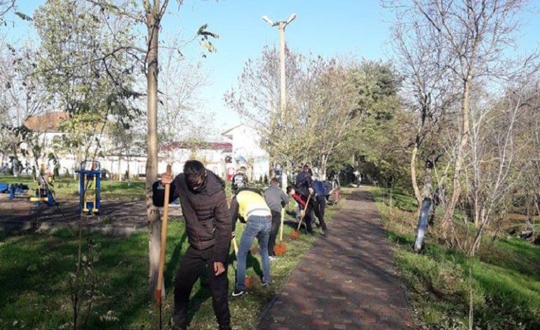 Первокурсники Тарутинского аграрного лицея присоединились к природоохранной акции «Посади дерево»