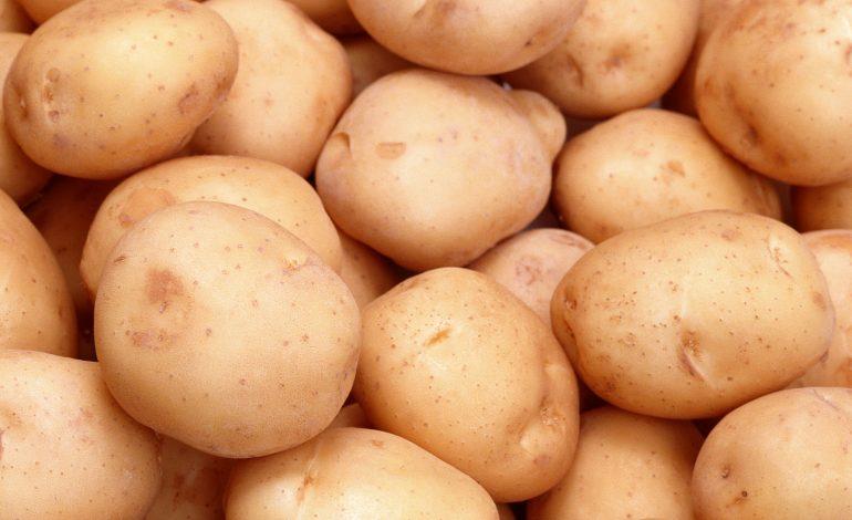 Украина вошла в топ-3 стран-производителей картофеля