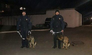 Почему полиция в Белгороде-Днестровском устраивает облавы