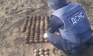 Сарата: сельский житель обнаружил в огороде сотню гранат
