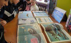В Арцизе дети знакомились с жизнью китов