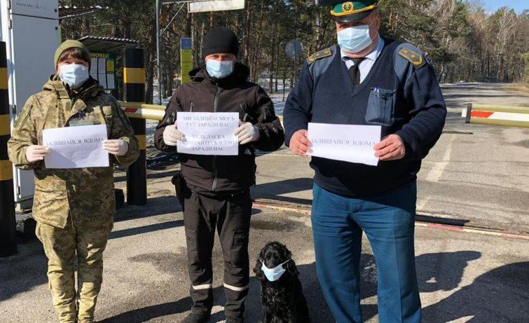 «Воронавирус», или Как Украина может проворонить эпидемию