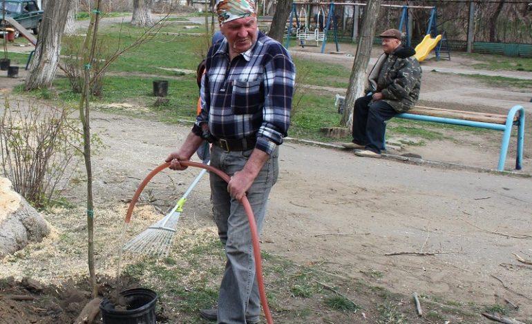 Как  Белгород-Днестровский озеленяют,  и кто  решит вопрос с бродячими животными